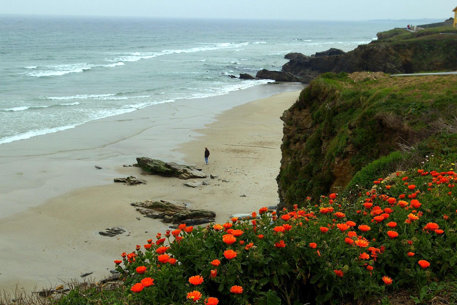 Foto playa San Cosme / Altar. Playa San Bartolo,San Cosme de Barreiros, Lugo, Galicia