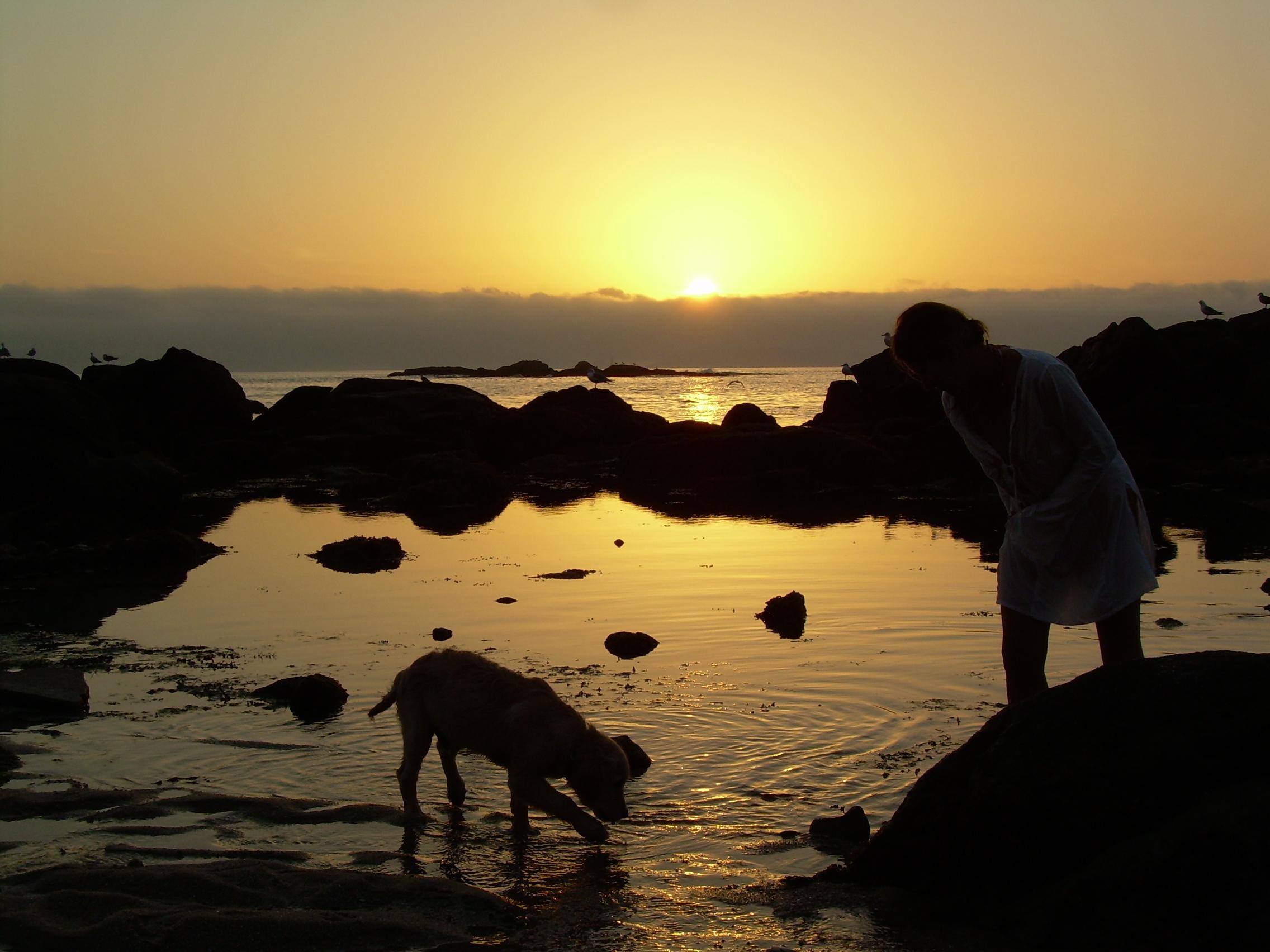 Foto playa Area Fofa. El ocaso
