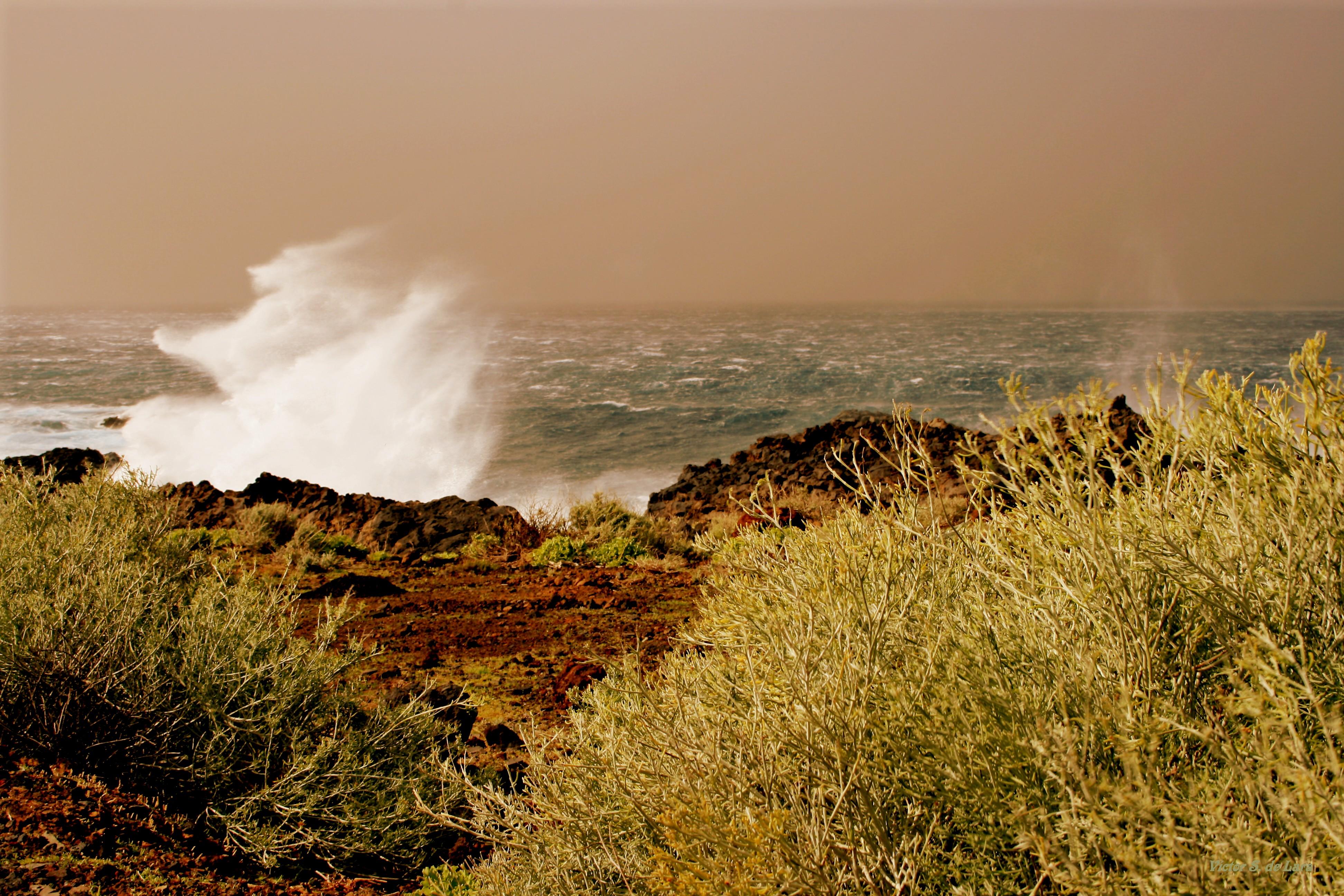 Foto playa Punta Grande. Jinete de Neptuno ( Neptune´s rider )