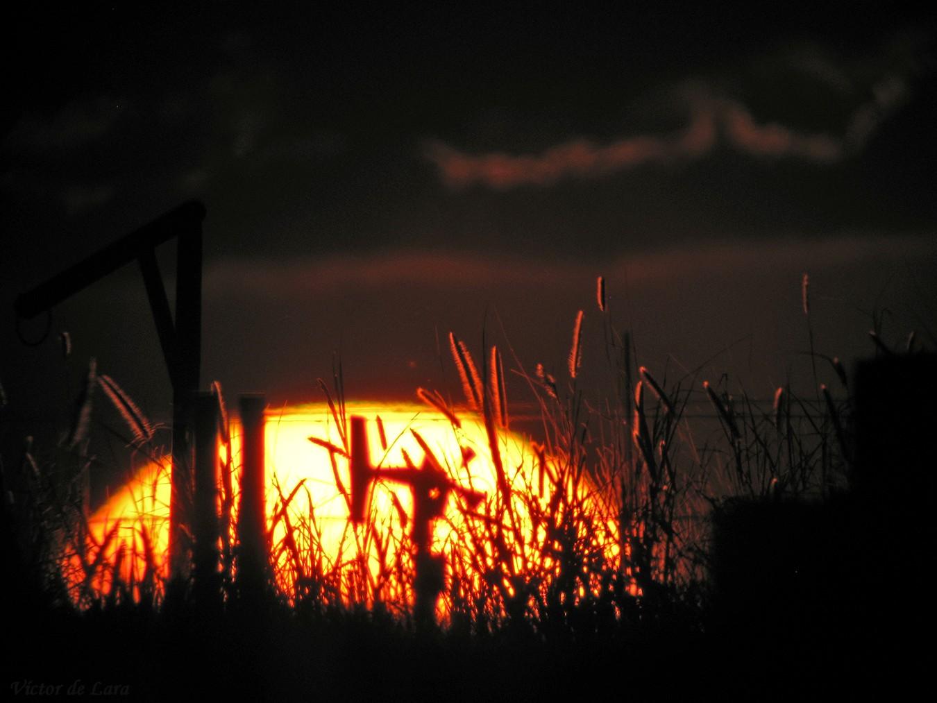 Foto playa Charco de los Sargos. Espigas doradas por el Sol / Sun-golden ears .. (estación meteorológica-weather station)