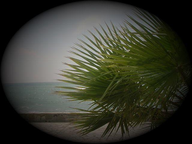 Foto playa Los Yesos. Los Yesos ( bien estar a su alcanze)
