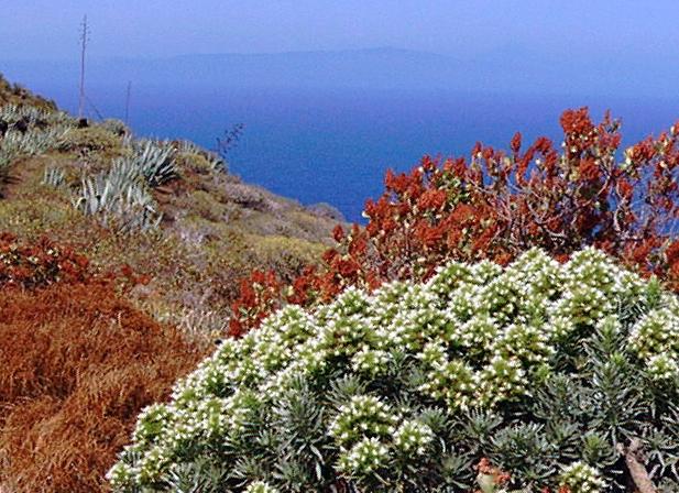 Foto playa Charco Manso. Northeast of El Hierro - im Nordosten von El Hierro