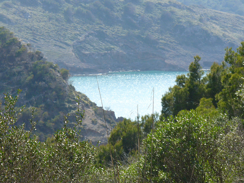 Foto playa Cala Carbó. la val
