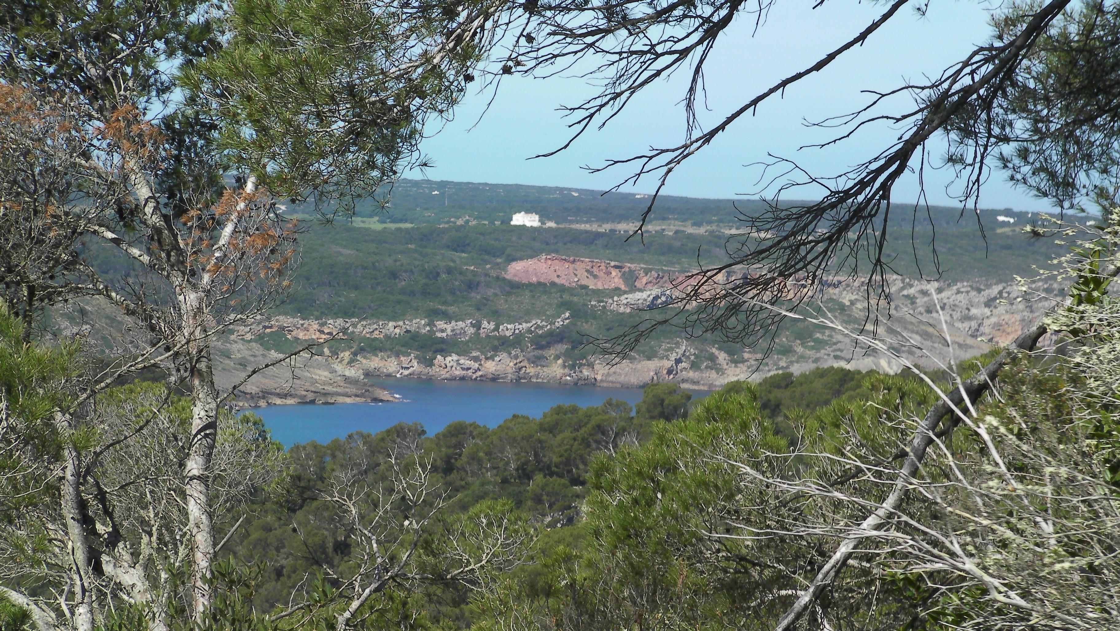 Foto playa Cala Carbó. Cami de cavalls de Sa Bassa Verda 17 (Vista Algaiarens)