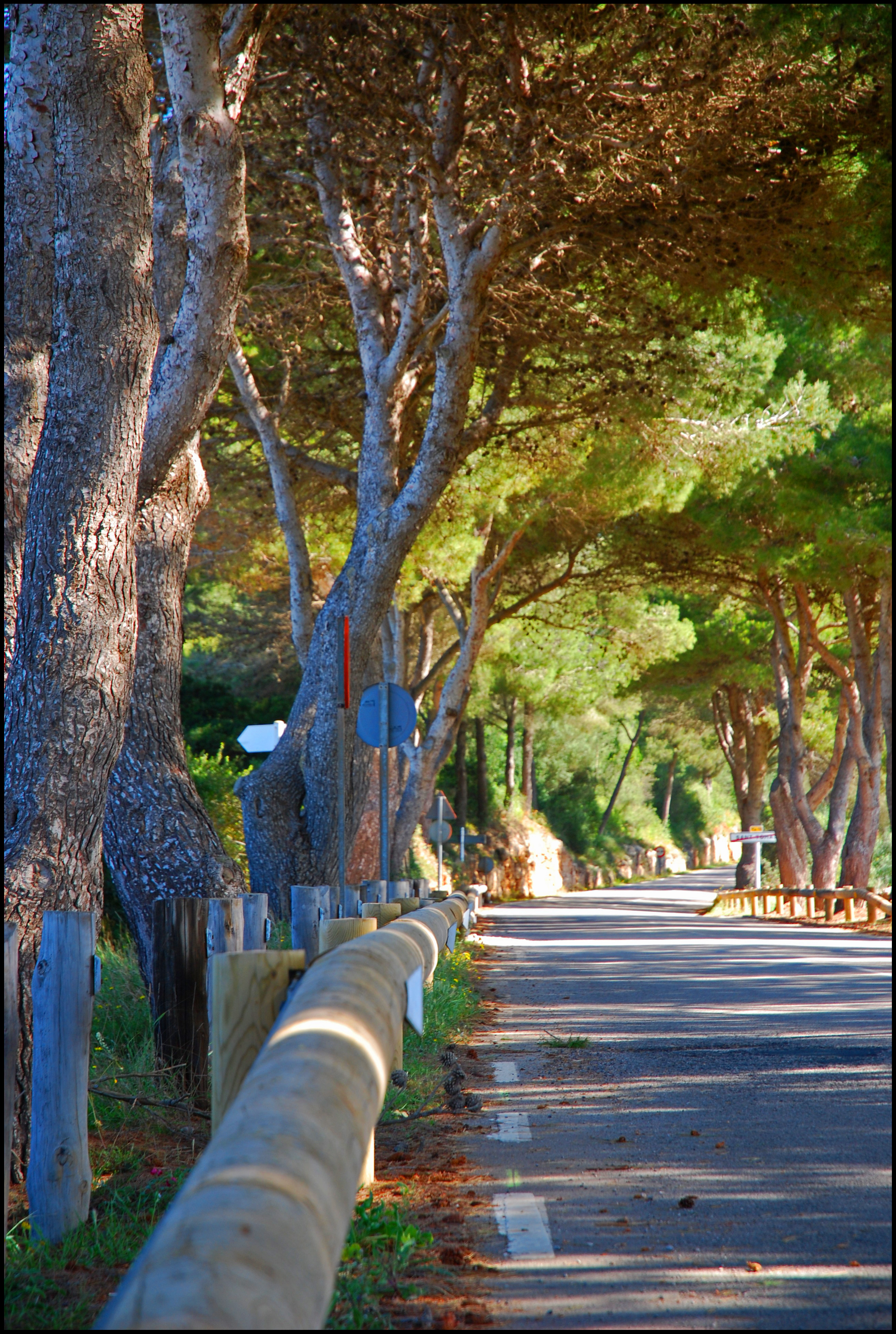 Foto playa Sant Tomas. Carretera de St. Tomas