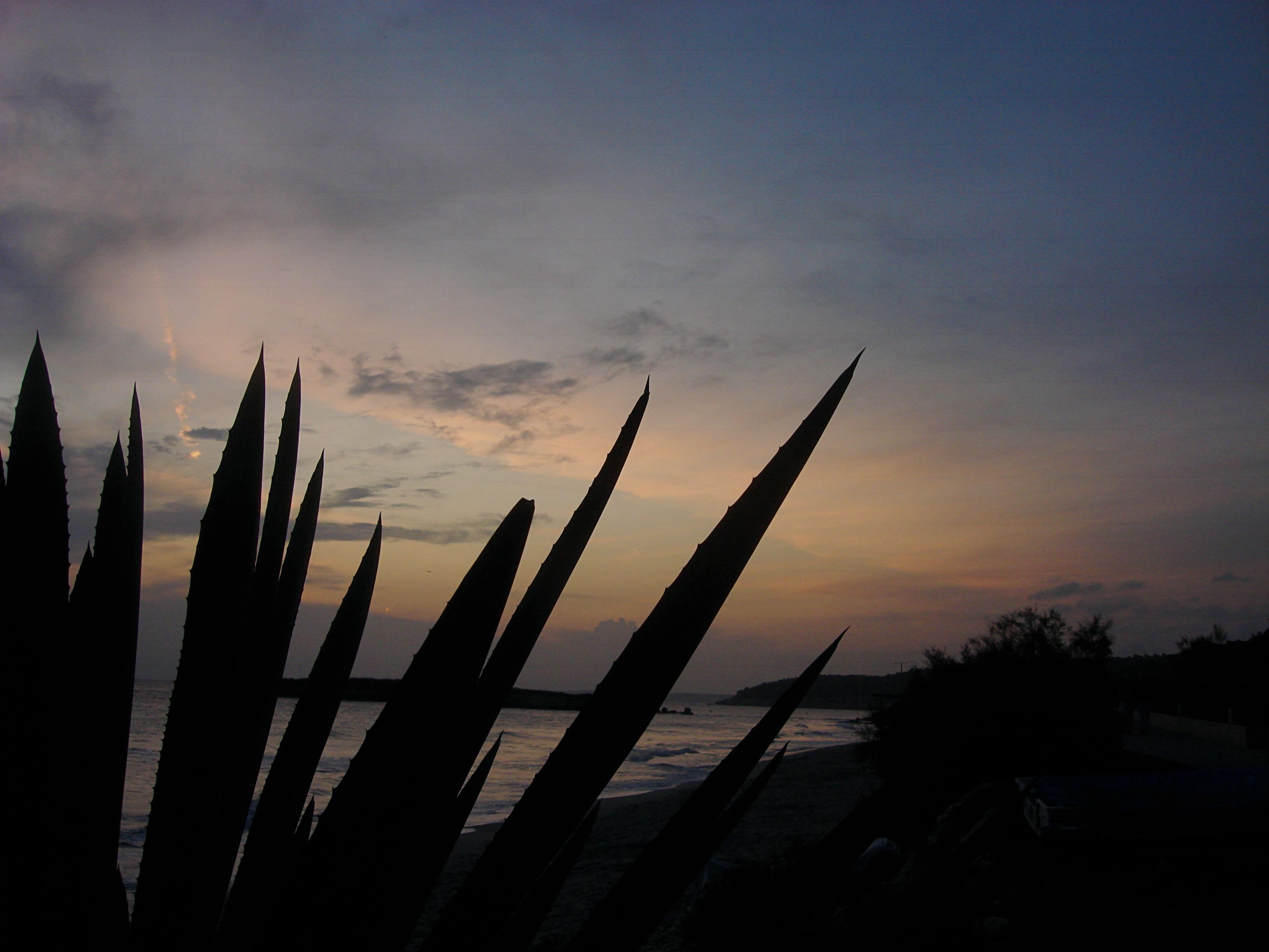Foto playa Sant Tomas. MENORCA 29 (Santo Tomás)