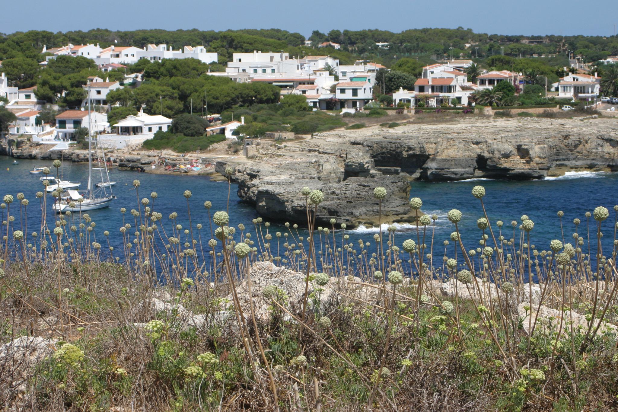 Foto playa Cala Alcaufar. Alcalfar & wild garlic