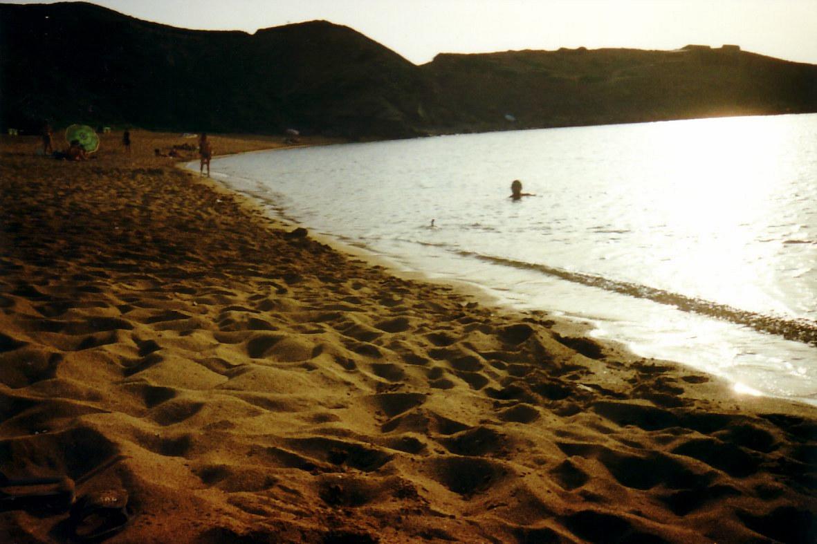Foto playa Es grau. Bañandome con un cormorán