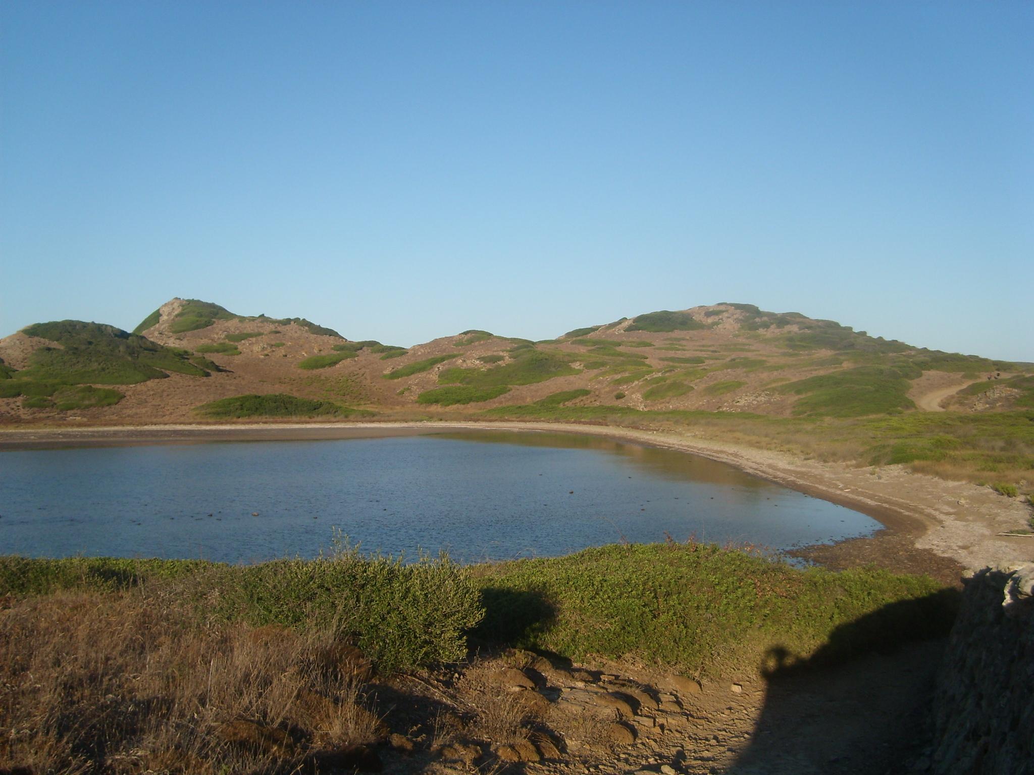 Foto playa Cala de Sa Torreta. Cala de Sa Torreta
