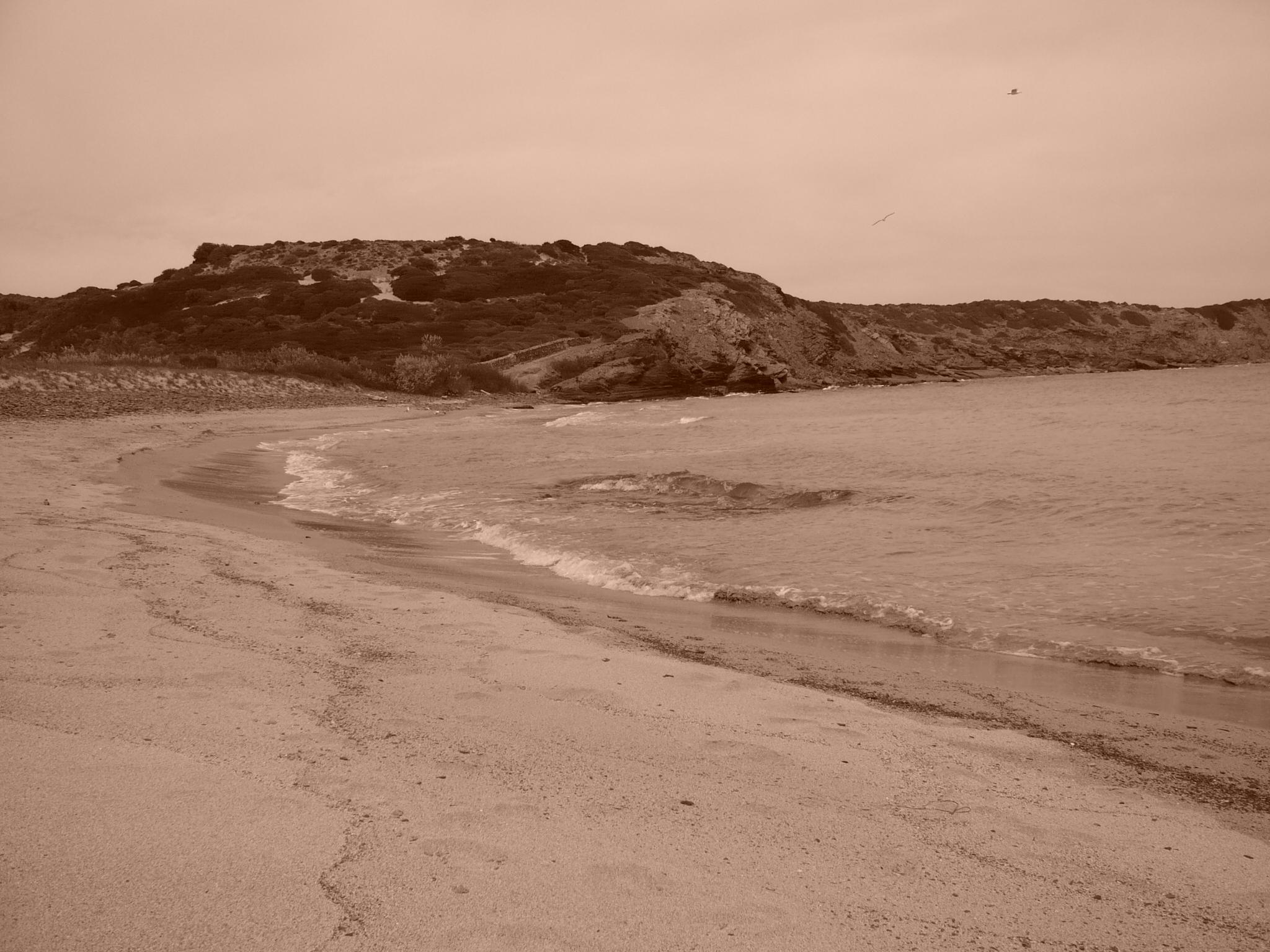 Foto playa Cala Morella Nou. cala tortuga