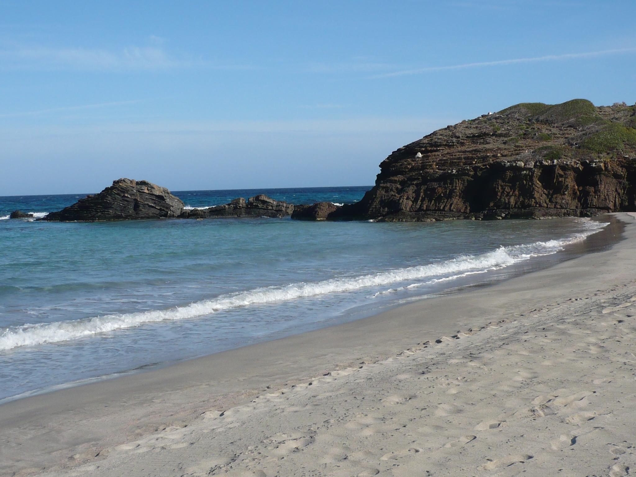 Foto playa Cala Morella Nou. cala tortuga lliure de gent!!