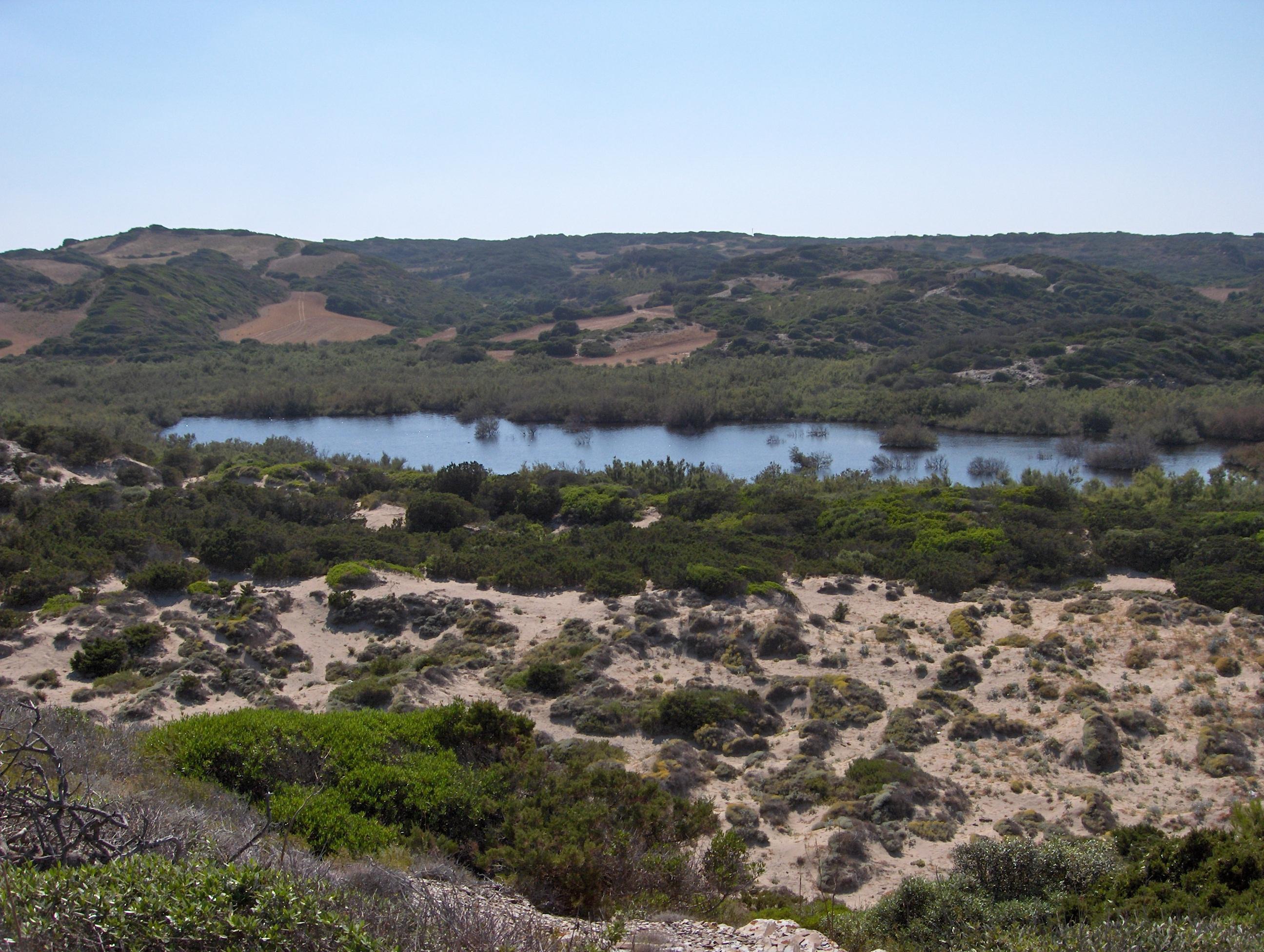 Foto playa Cala Morella Nou. Bassa de Morella